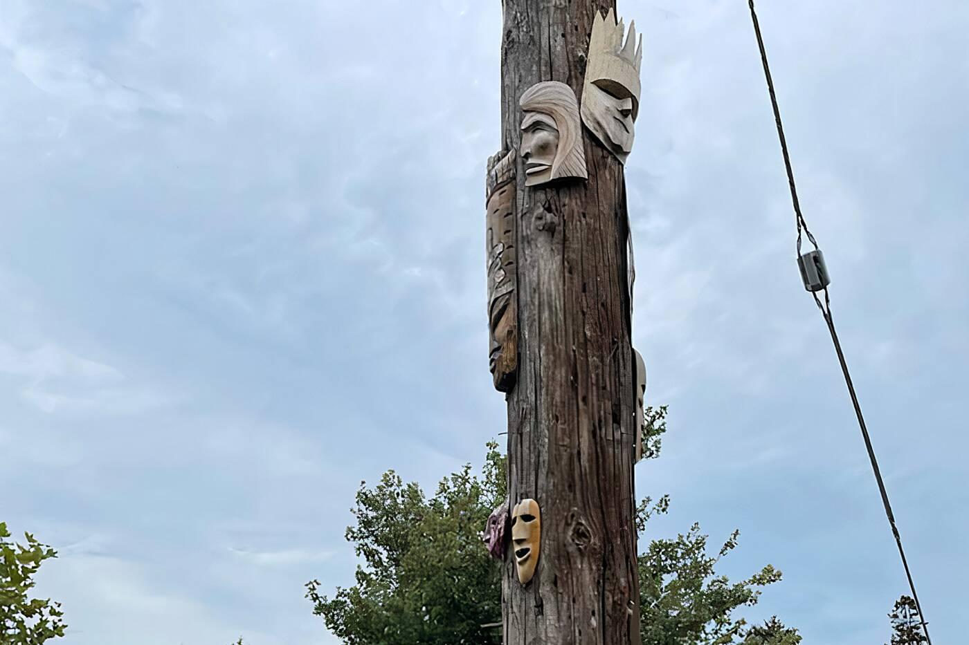 masks hydro pole