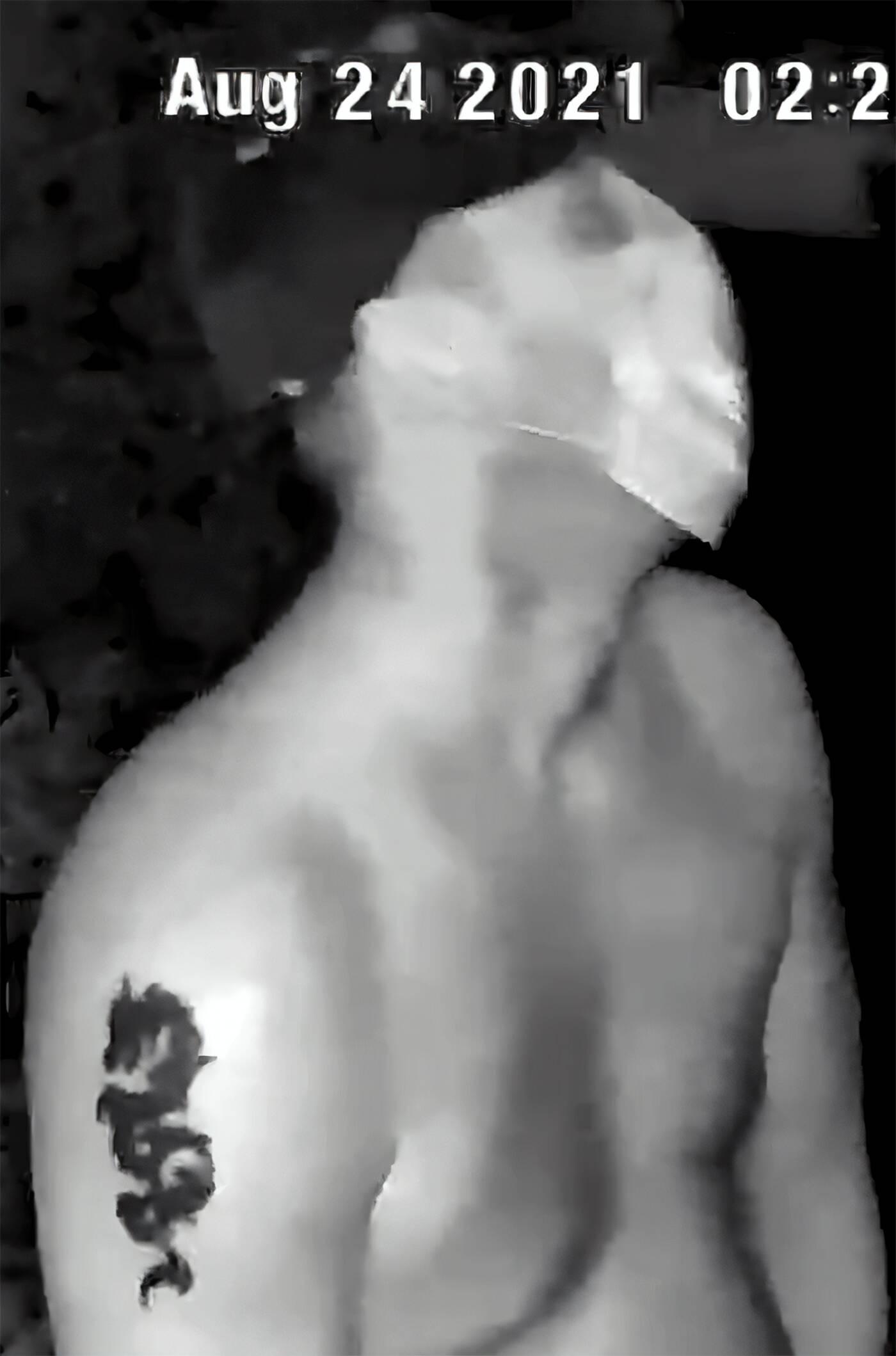 richmond hill prowler