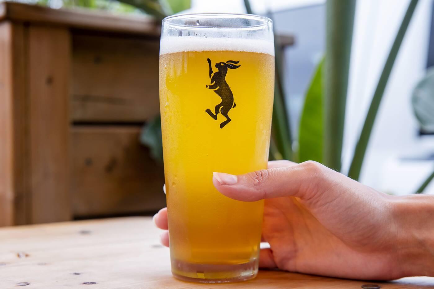 Mascot Brewery etobicoke