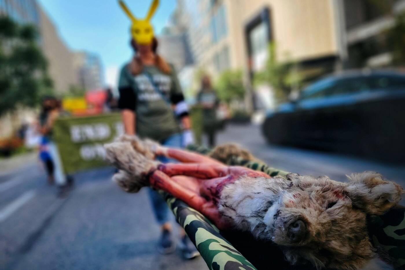 animal rights march toronto
